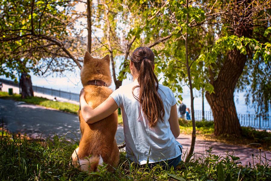 Пример фото с собакой. Лучший друг.