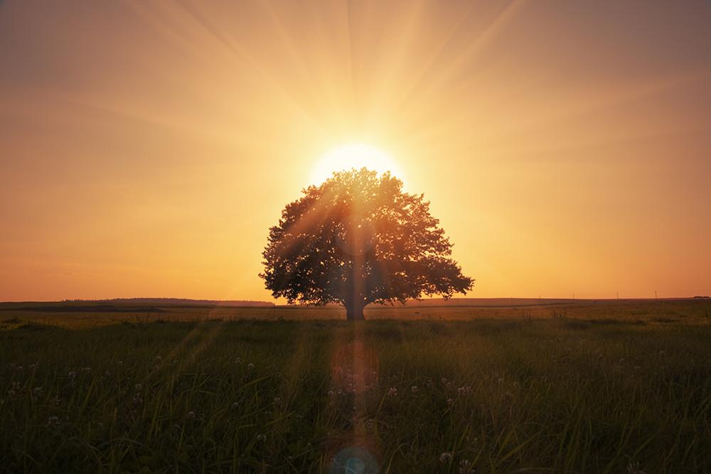 Пример съемки солнца