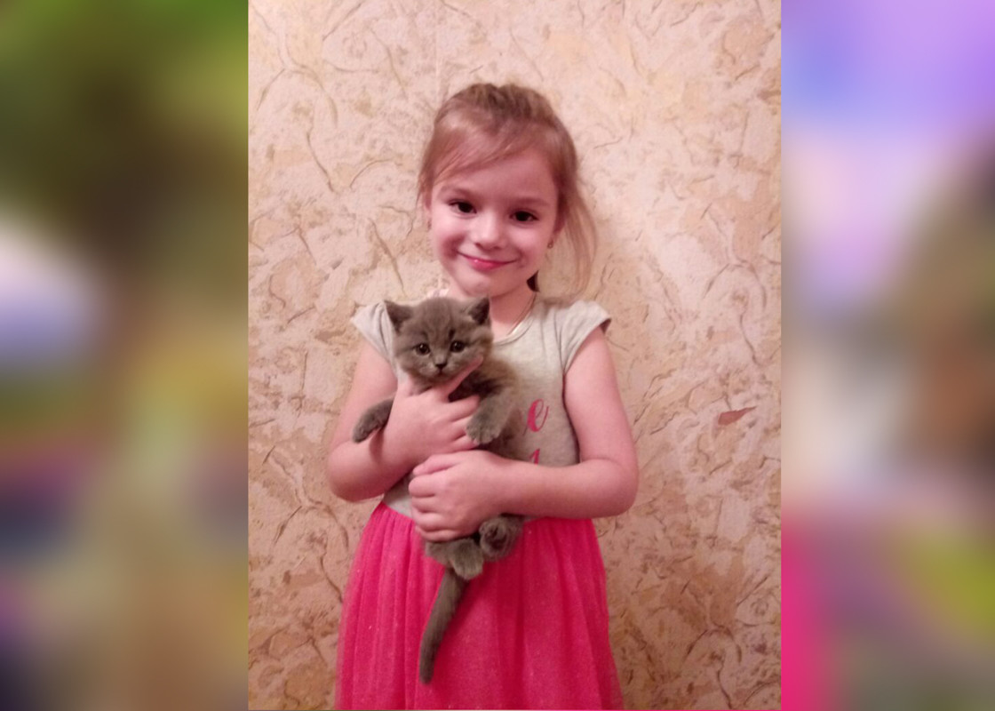 Принцесса с котенком - фотомонтаж, арт на заказ исходник